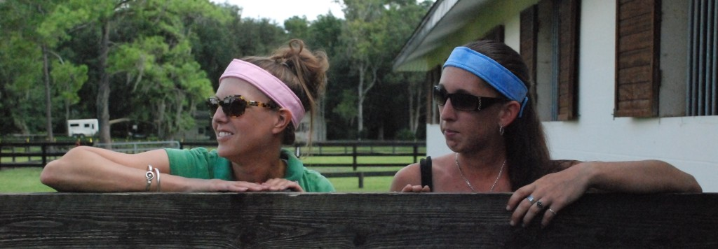 Equi Cool Down Headbands